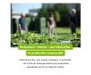 EPF Echinaforce® - Complément alimentaire pour soutenir le système immunitaire