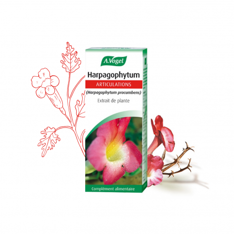 EPF Harpagophytum