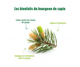 Jus de Choucroute Bio - Boisson naturelle pour soutenir votre transit