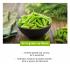 Jus de Pommes de Terre Bio - Boisson naturelle aux nombreuses propriétés positives