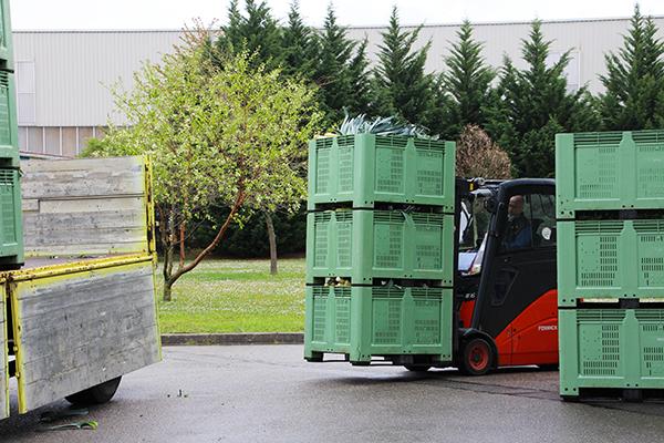 Transport de poireaux qui servent à la fabrication d'Herbamare